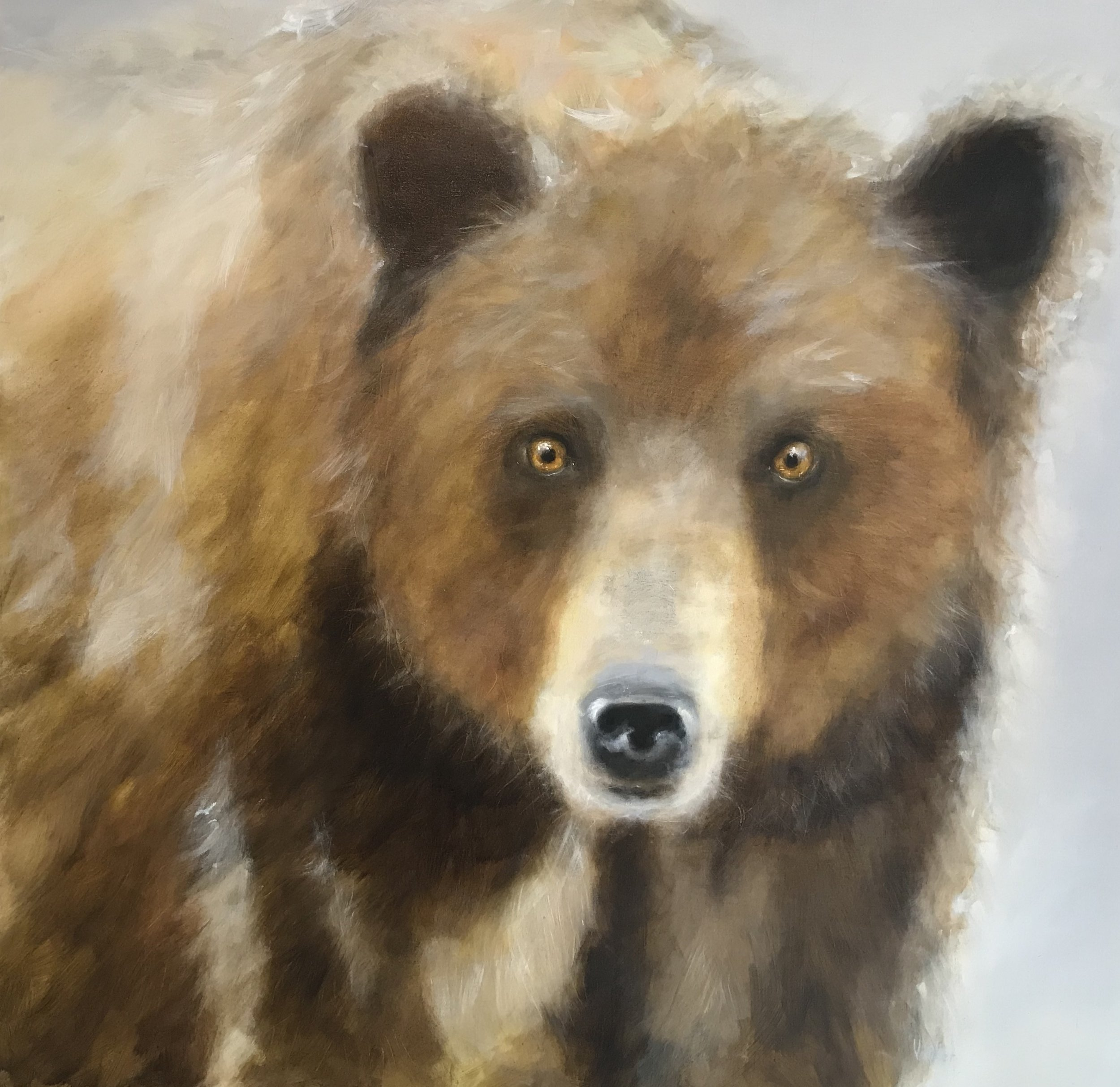 Harvest Moon Grizzly 36 x 48 Sold