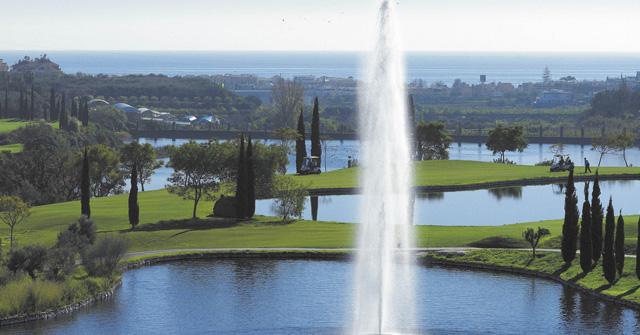Flamingos-Golf-Slider-04.jpg