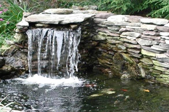 SERVICE Pond (3x2)