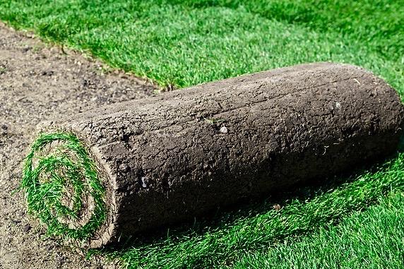 SERVICE GrassPlant (3x2)