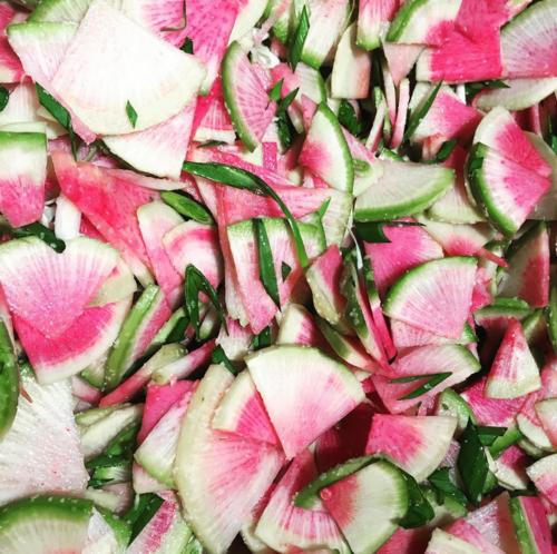 watermelonradish.png