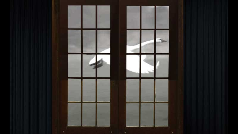 Video projection on the Grange Hall doors