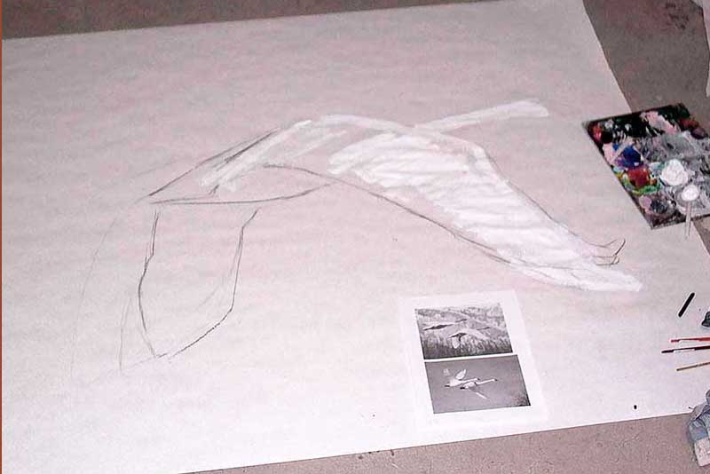 Swans begin in sketch and Gesso