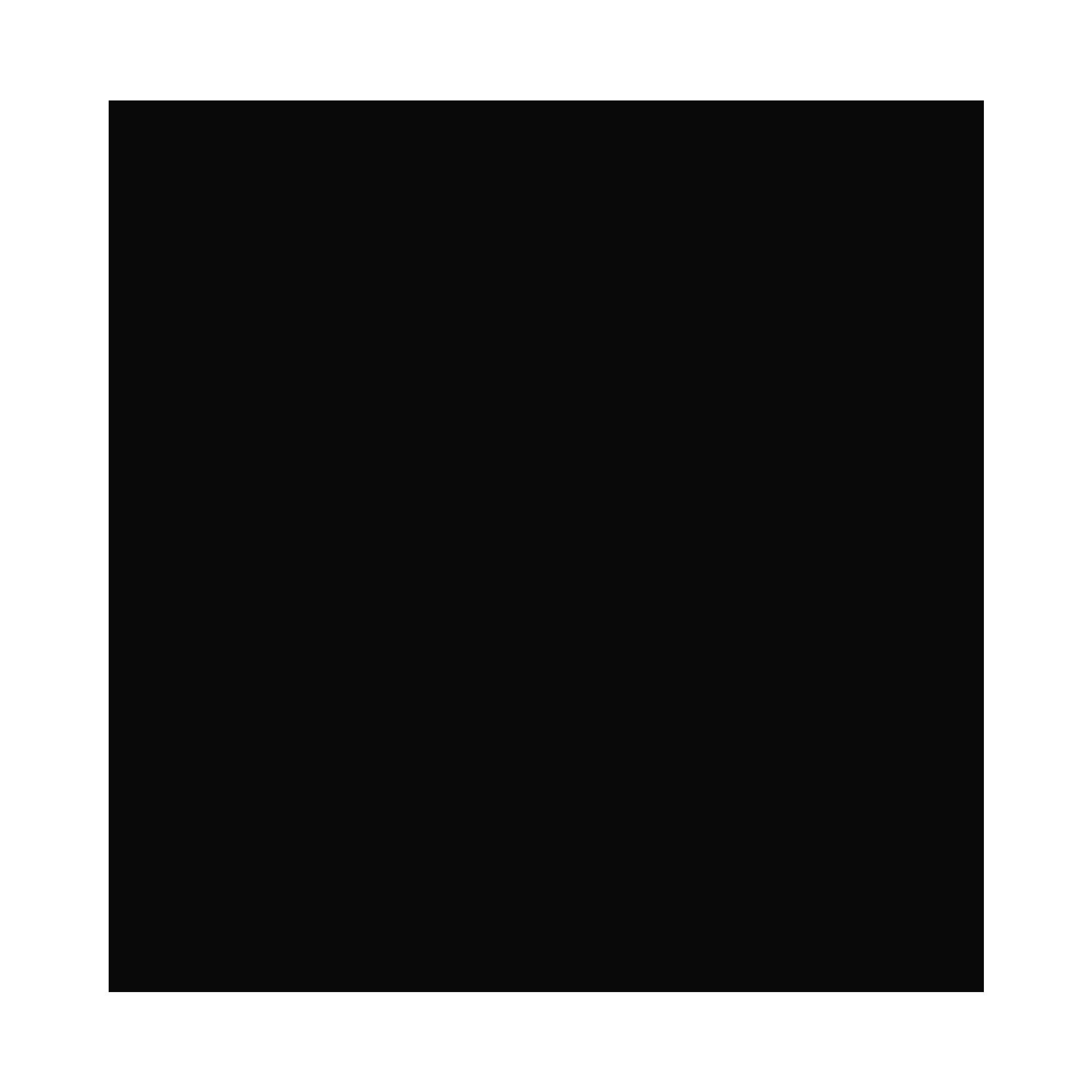 International Institute of RI