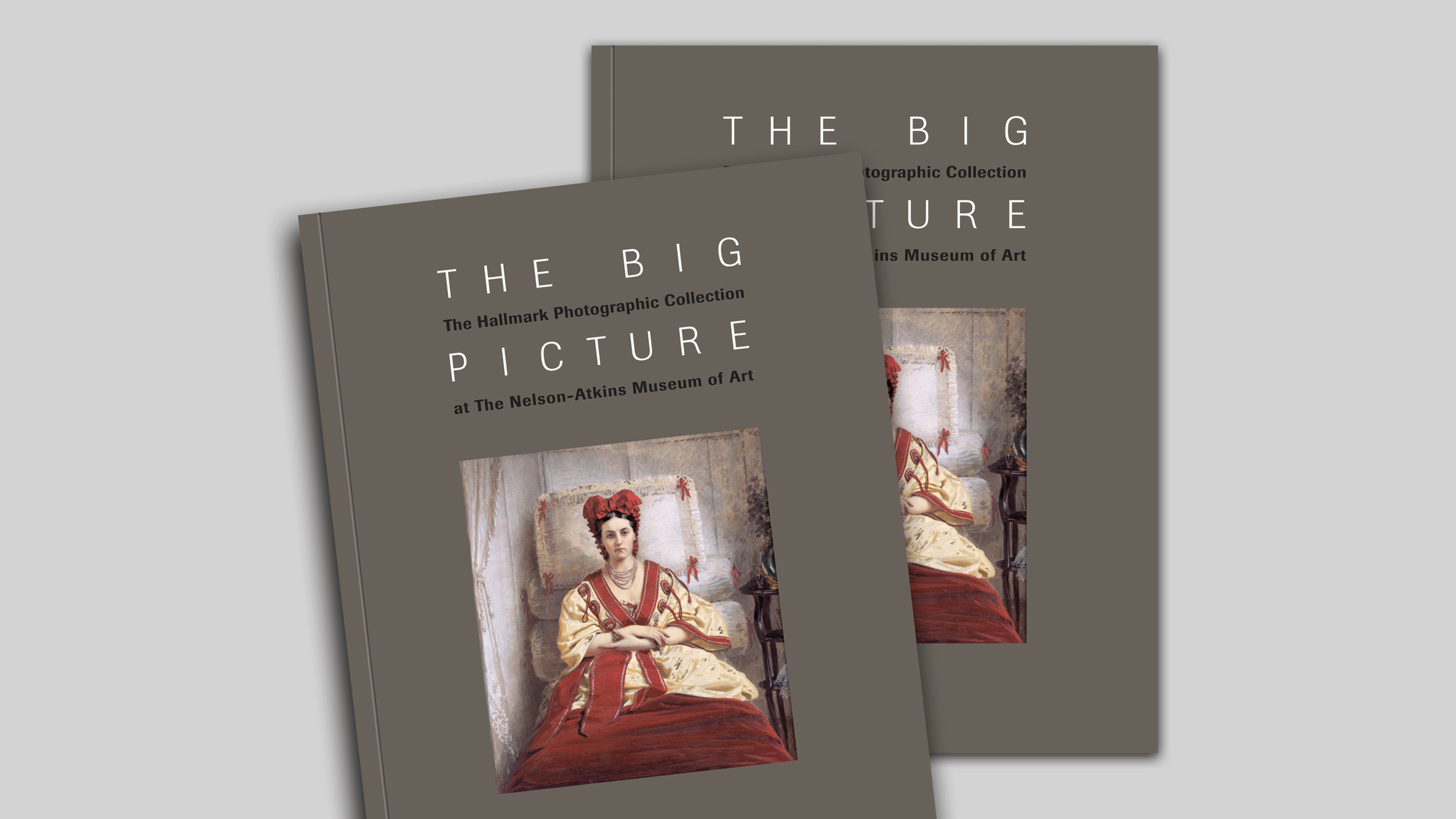 NAMA_BigPicture_Cover.png