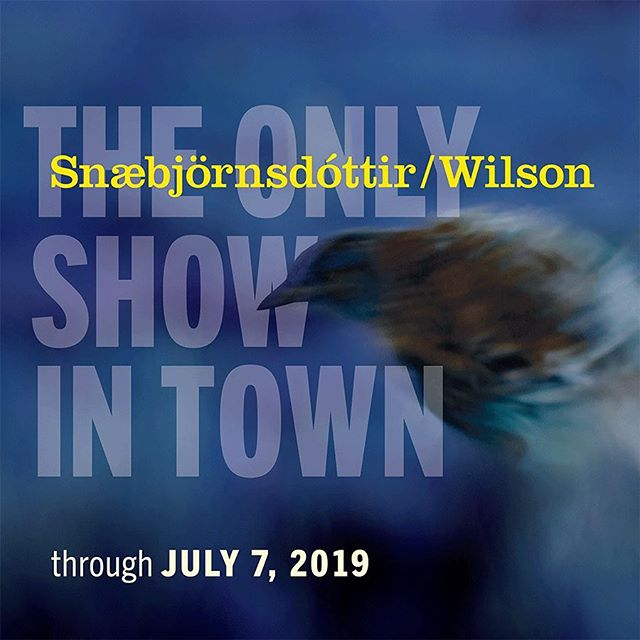 Snæbjörnsdóttir/Wilson: The Only Show in Town on view at the #davidwintonbellgallery through July  7. #bryndissnæbjörnsdóttir #markwilson #brownuniversity #exhibitiongraphics #exhibitionidentity #brochuredesign #installationgraphics #graphicdesign