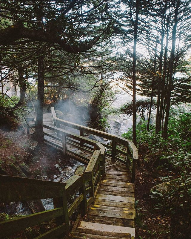 Steamy boardwalks almost always lead to good places.