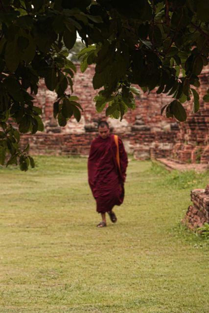 11 aWalking Monk.jpg