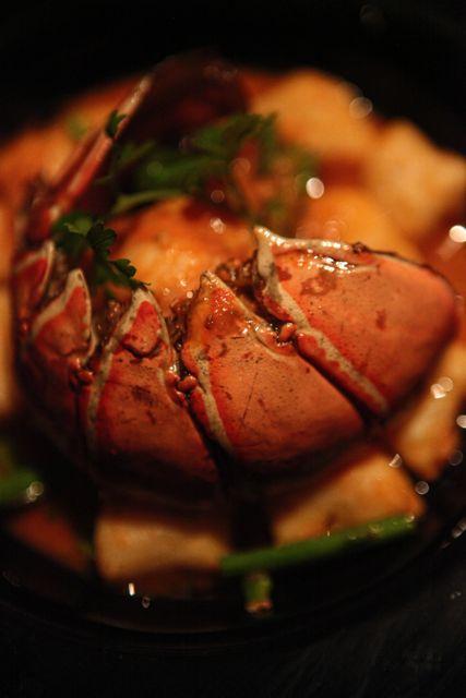 Lobster Gnocci at Annatara.jpg