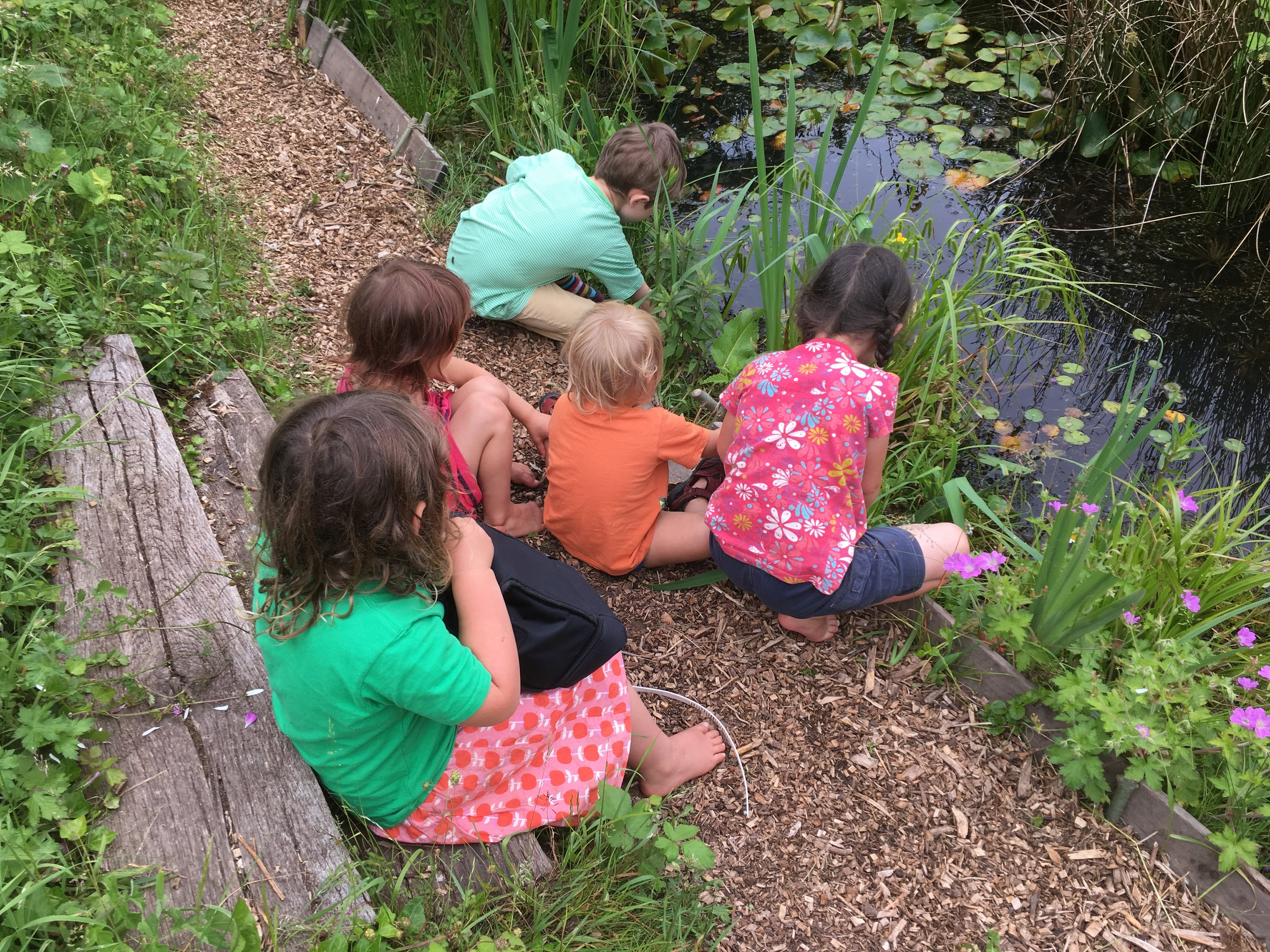 children can be free to explore our little oasis of wilderness in the middle of the city