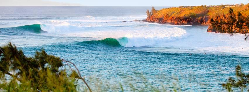 PC Honolua Surf Co.