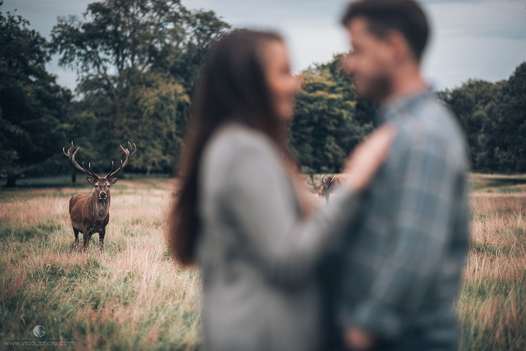 Tatton Park Engagement Session_08.JPG