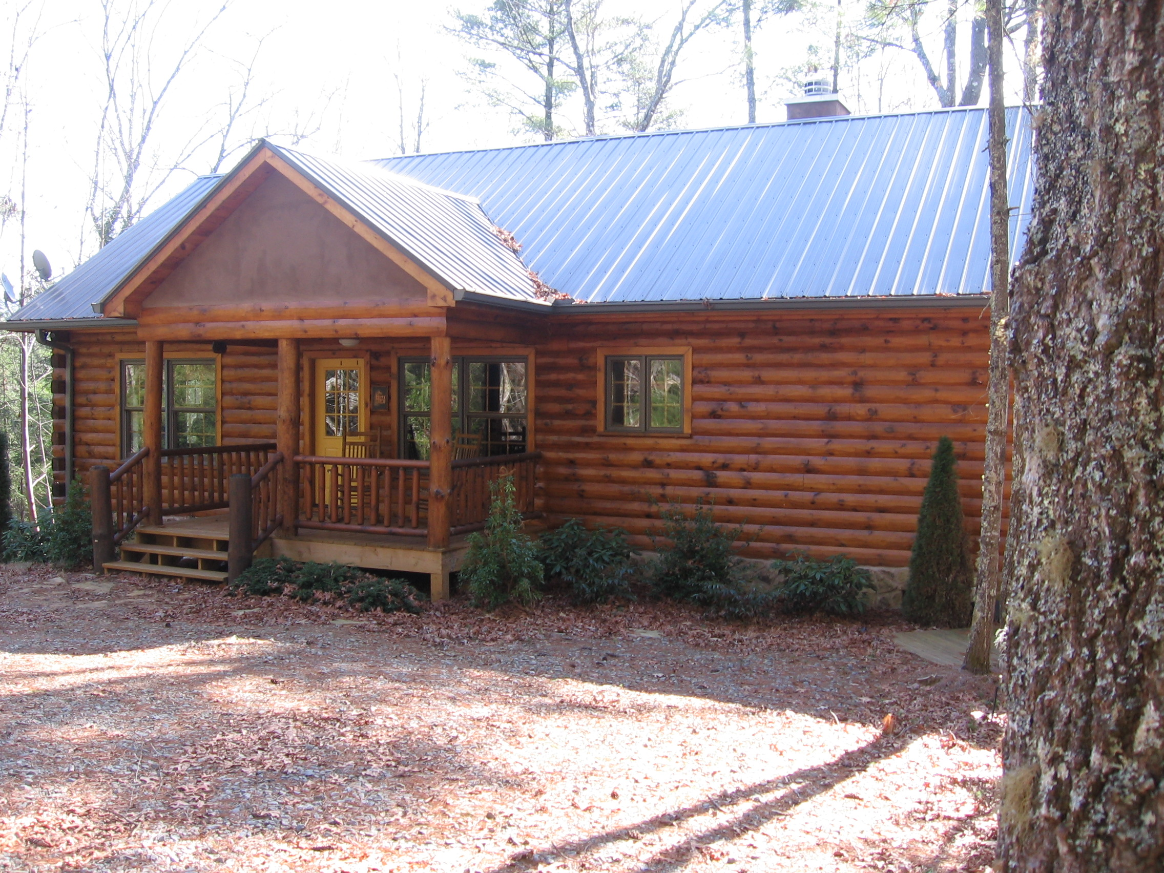 Cabin-metal roof.jpg