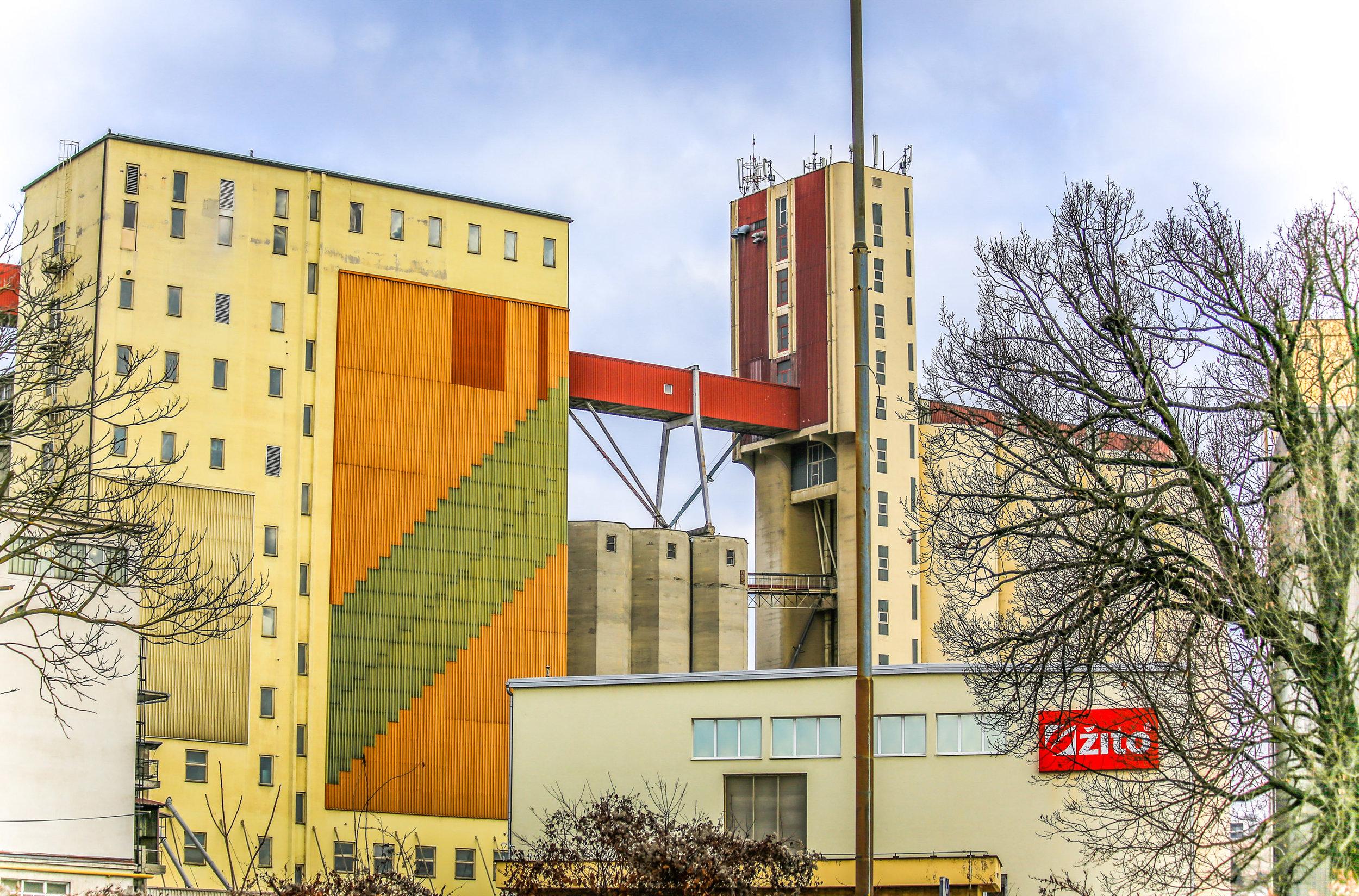 Foto: Igor Unuk - Žito