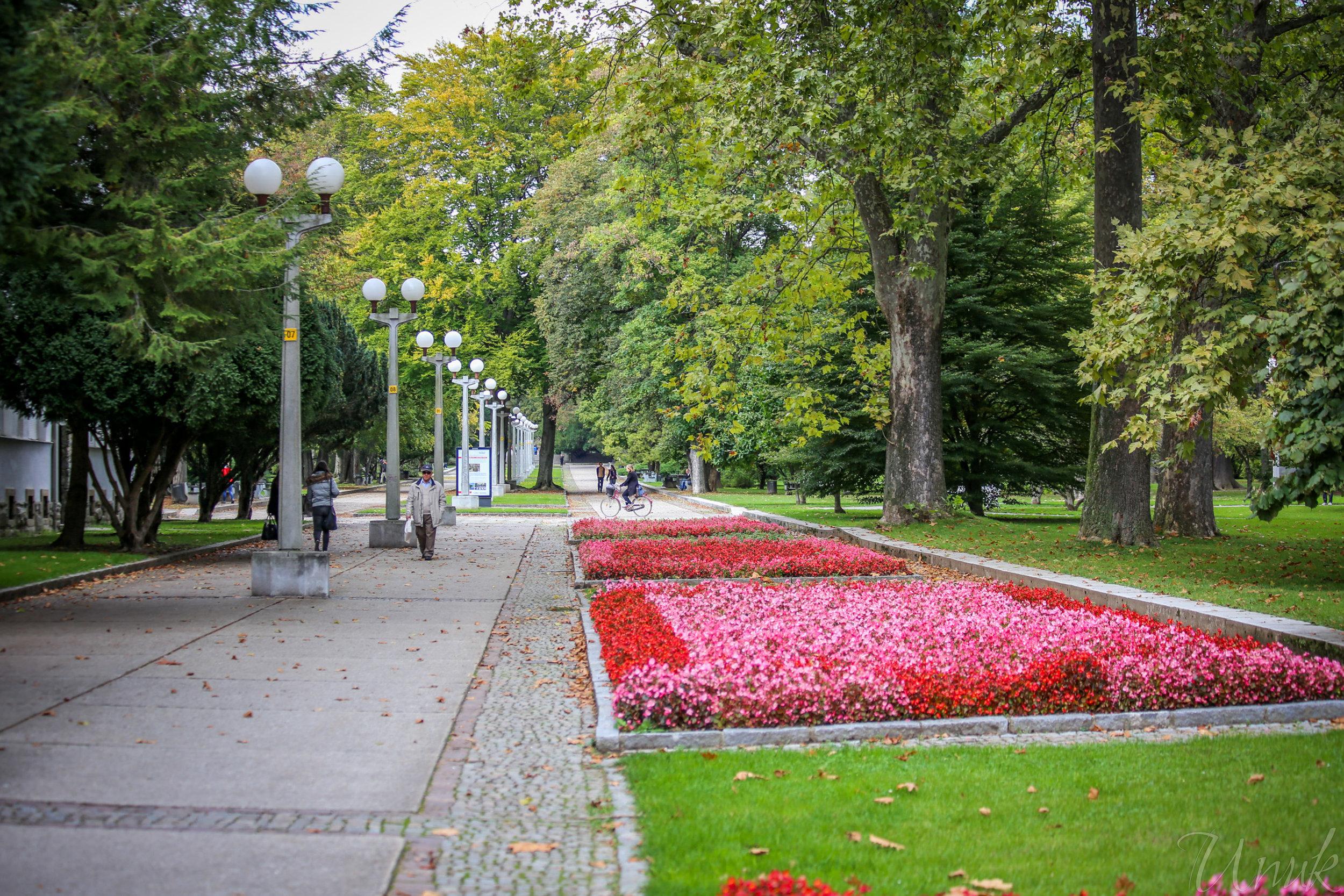 Foto: Igor Unuk - City Park