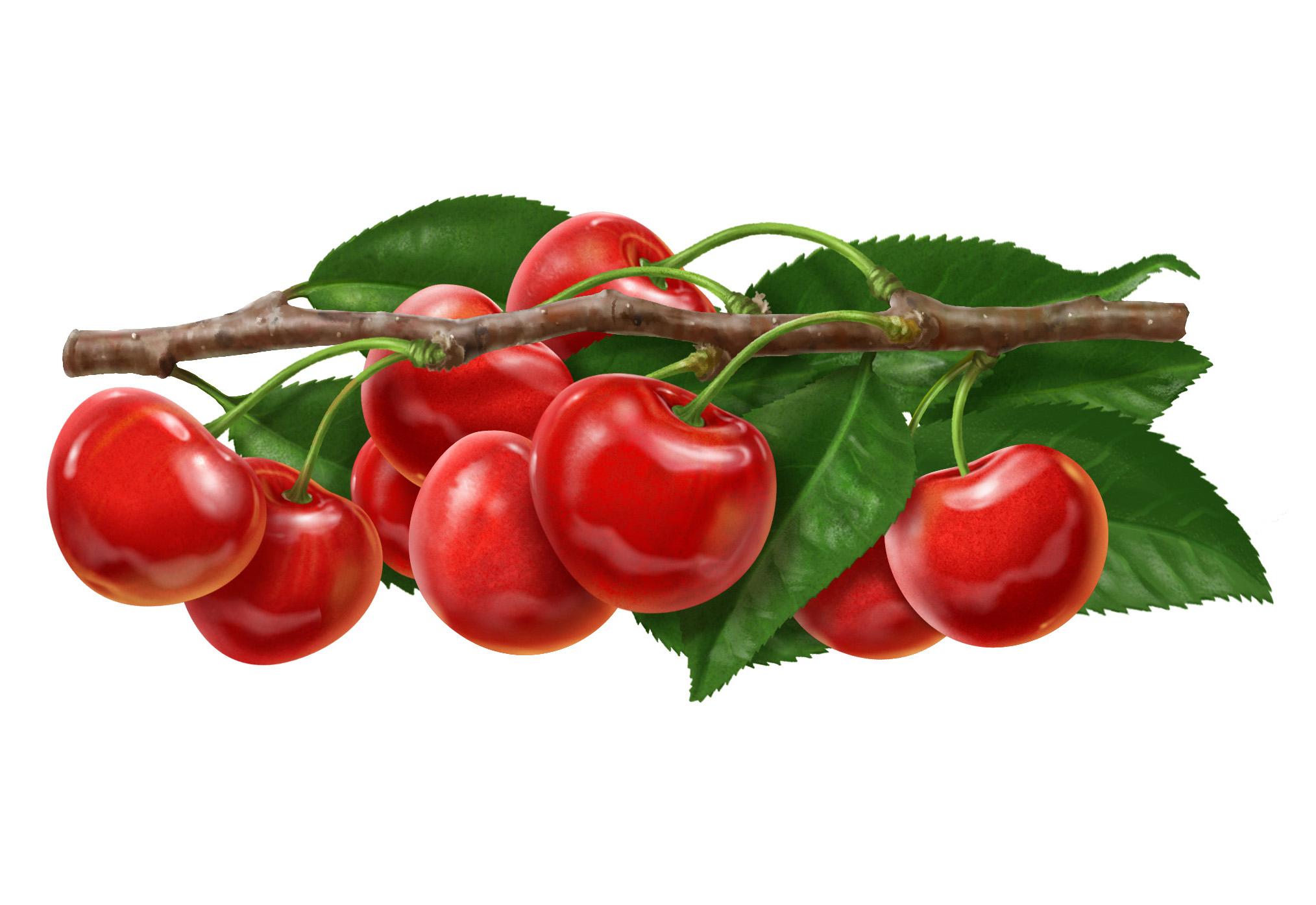 Cherry final.jpg
