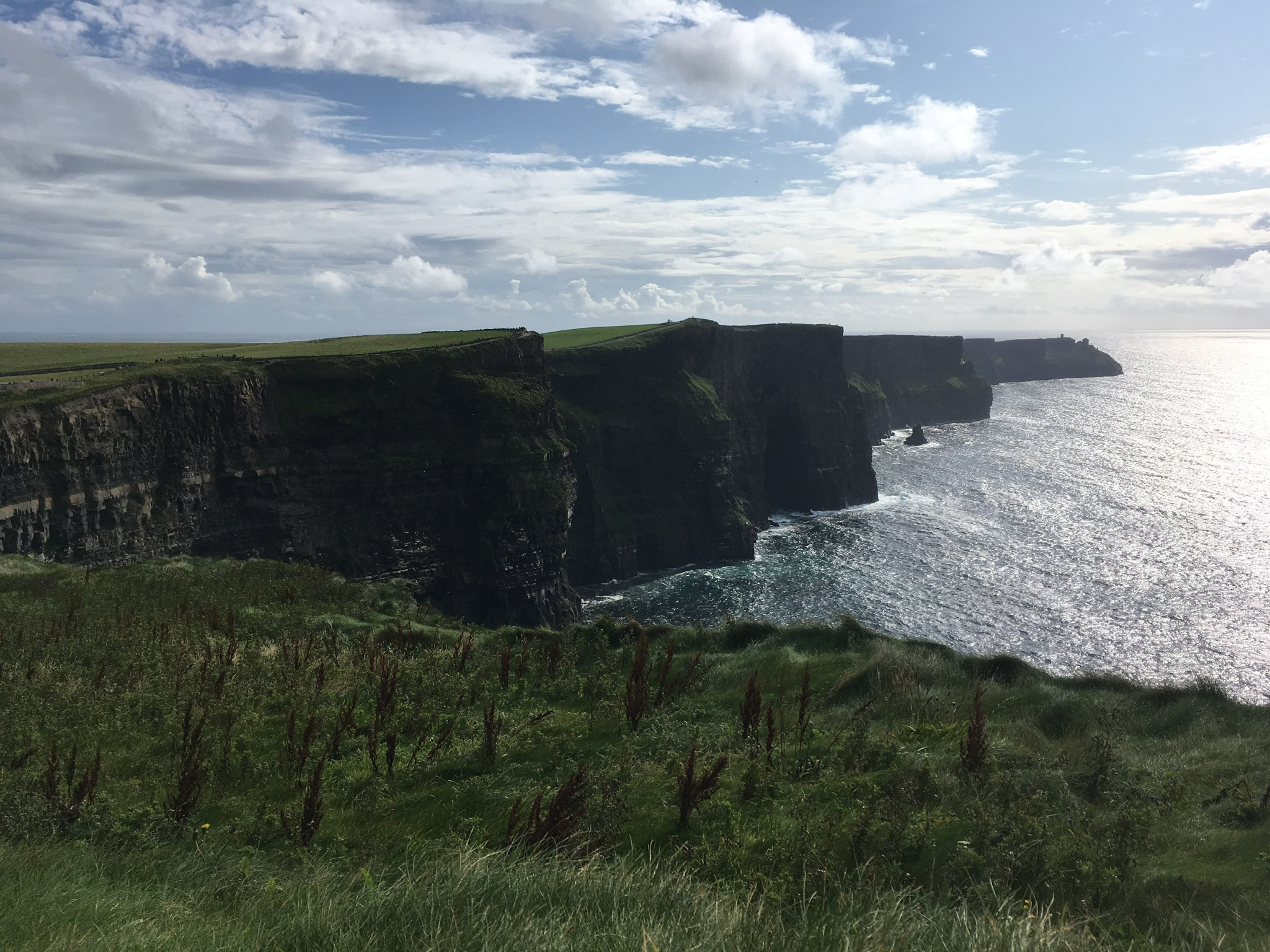 The Cliffs of Moher, just one of the amazing things I saw on my holidays.