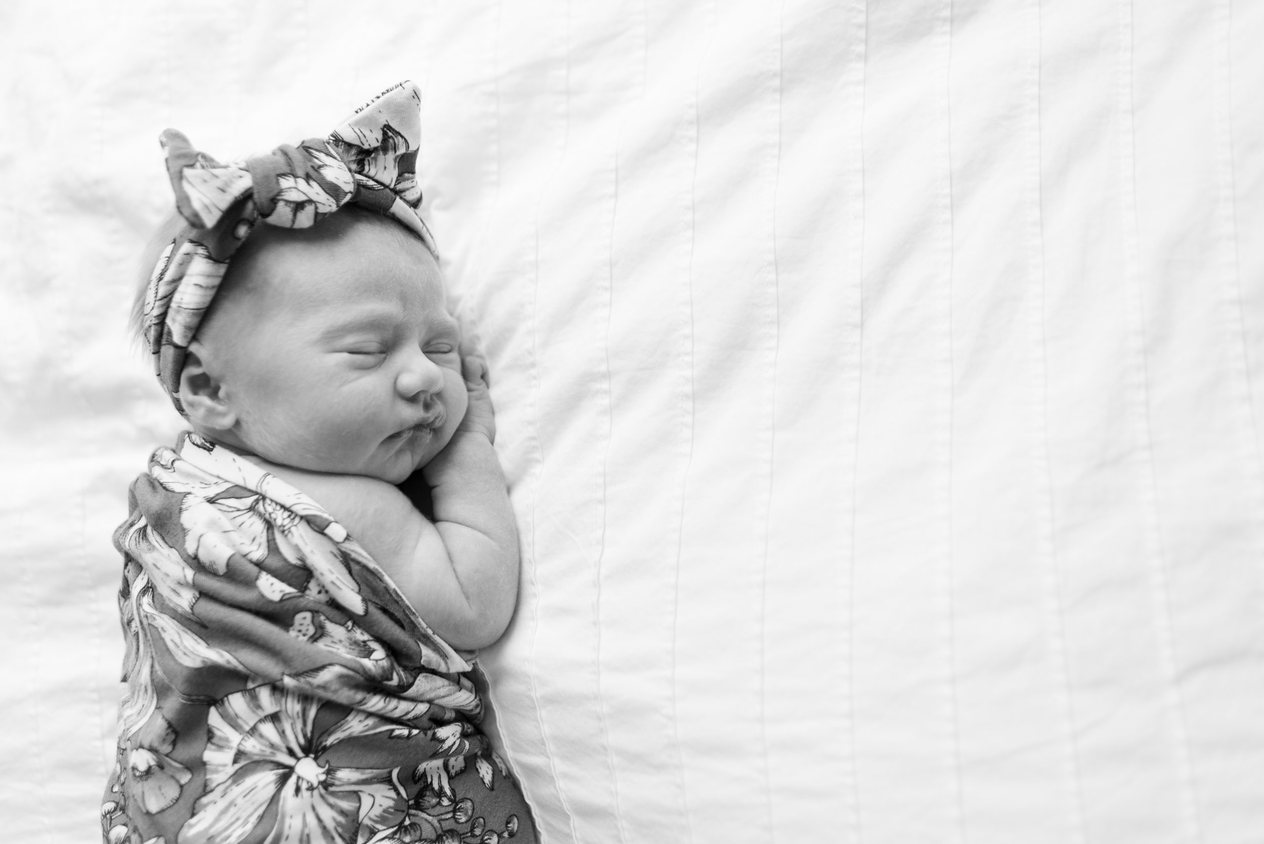 Schillinger Newborn Photos (28 of 156).jpg