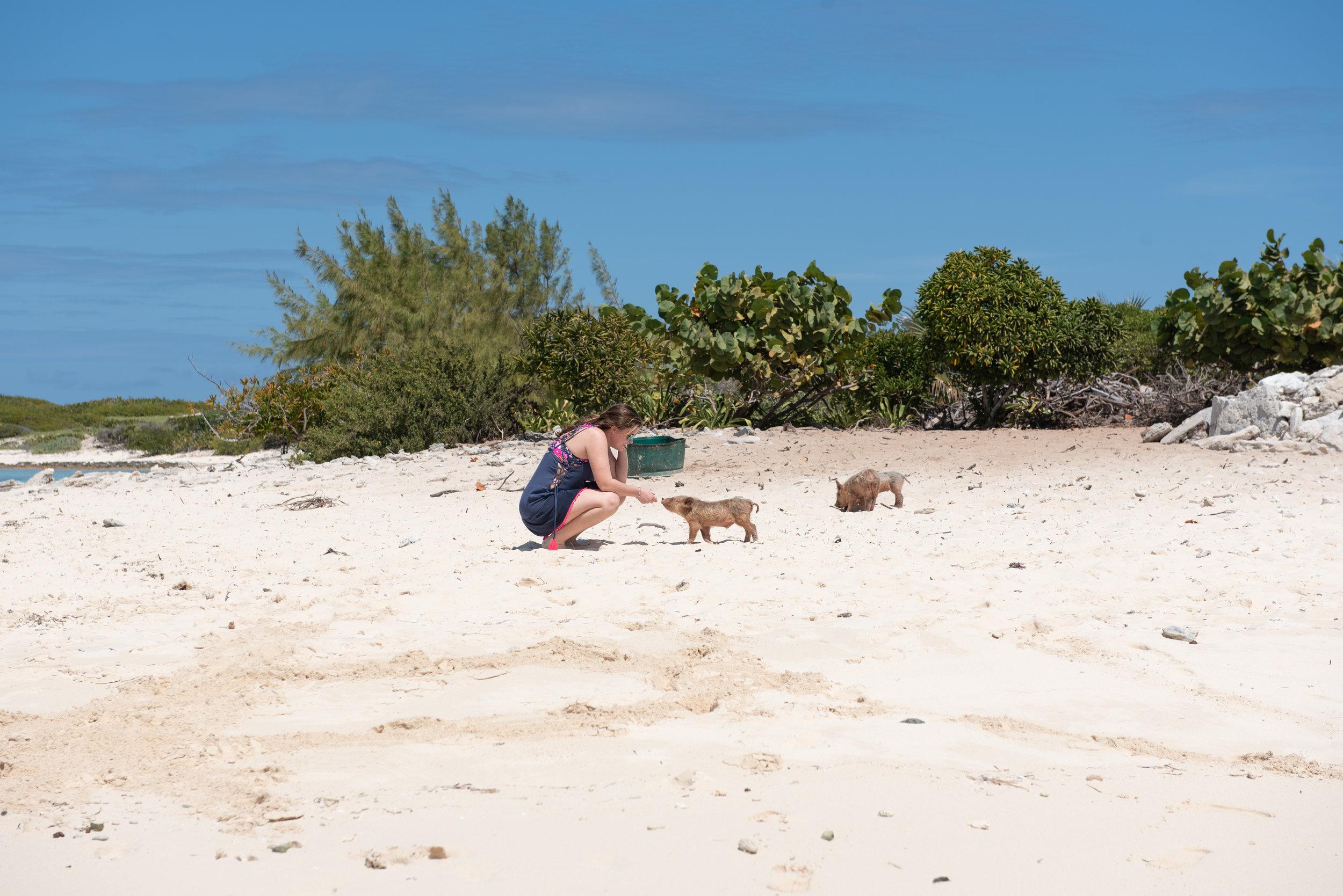 Exuma Bahamas 2019  (10 of 71).jpg