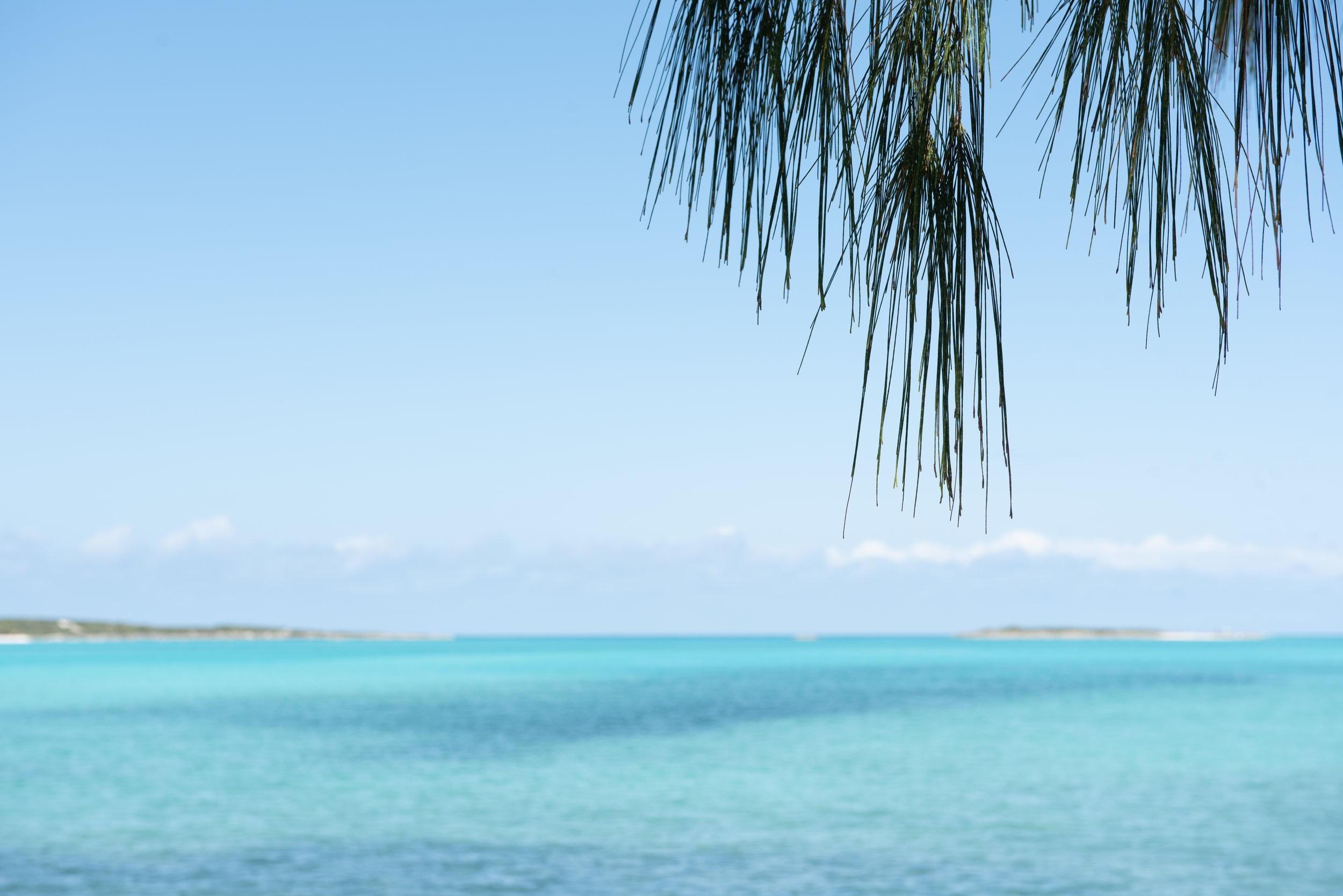 Exuma Bahamas 2019  (15 of 71).jpg