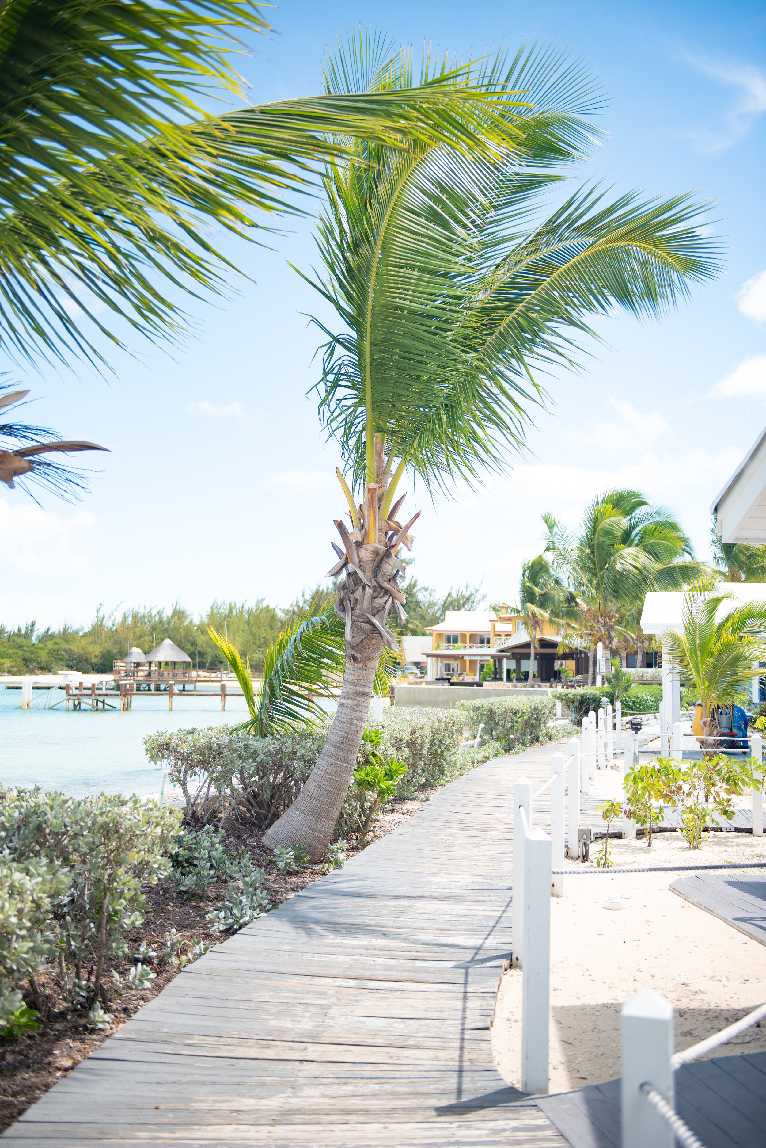 Exuma Bahamas 2019  (70 of 71).jpg