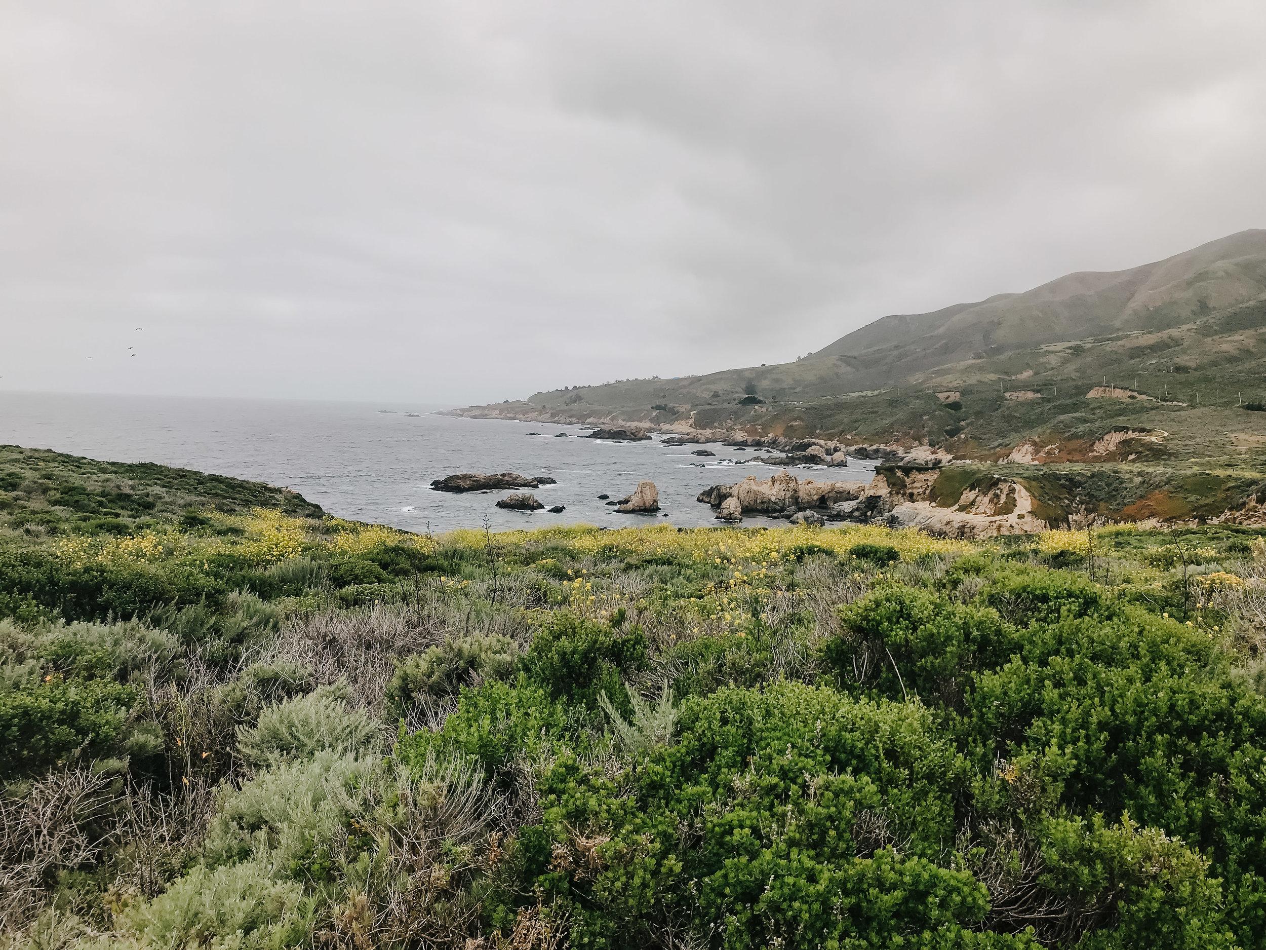 Connie Marina Photography California -4.jpg