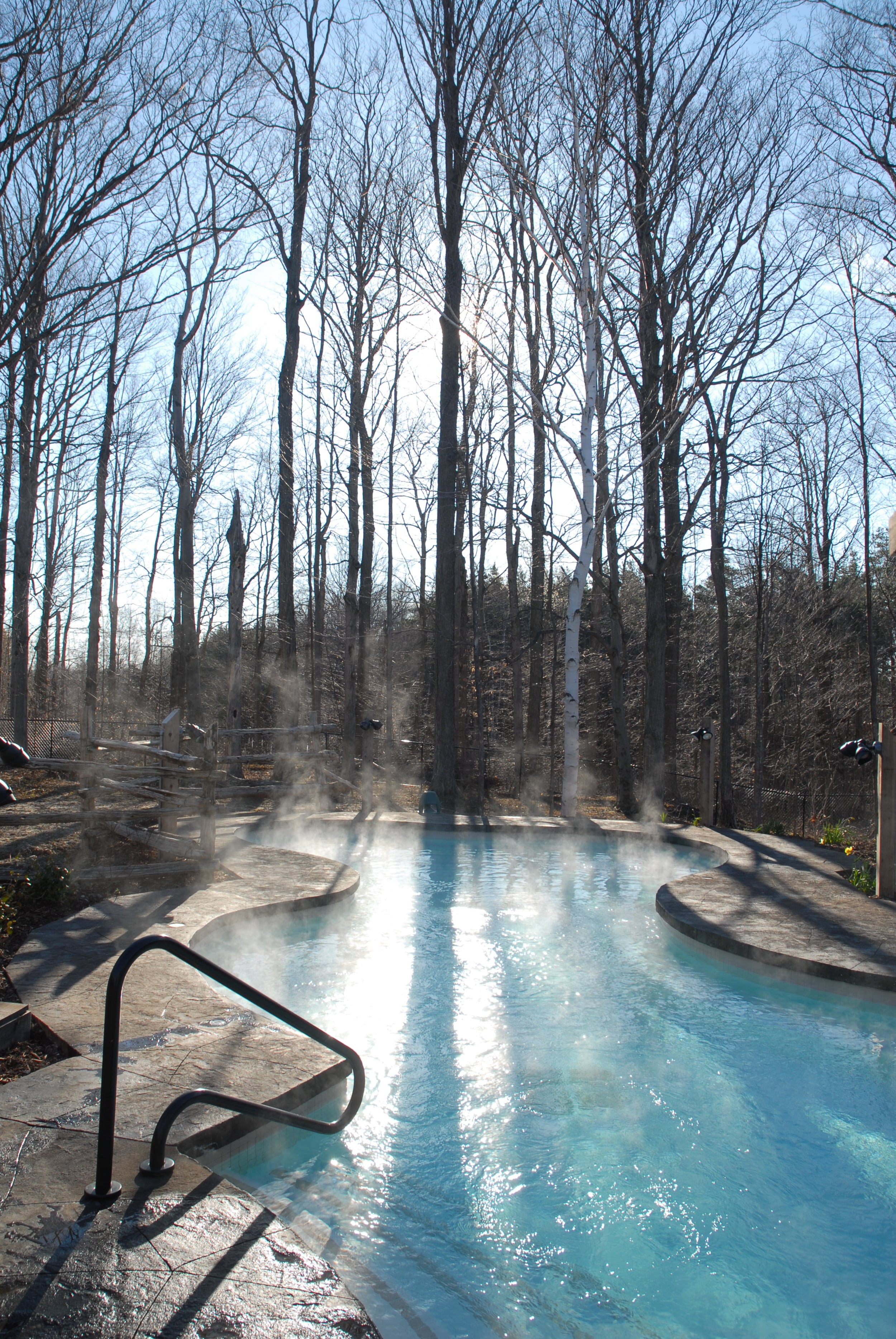 forest baths winter.jpg