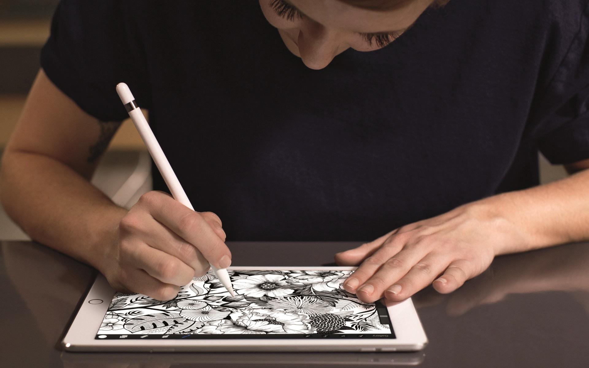iPad Pro (9.7 inch)