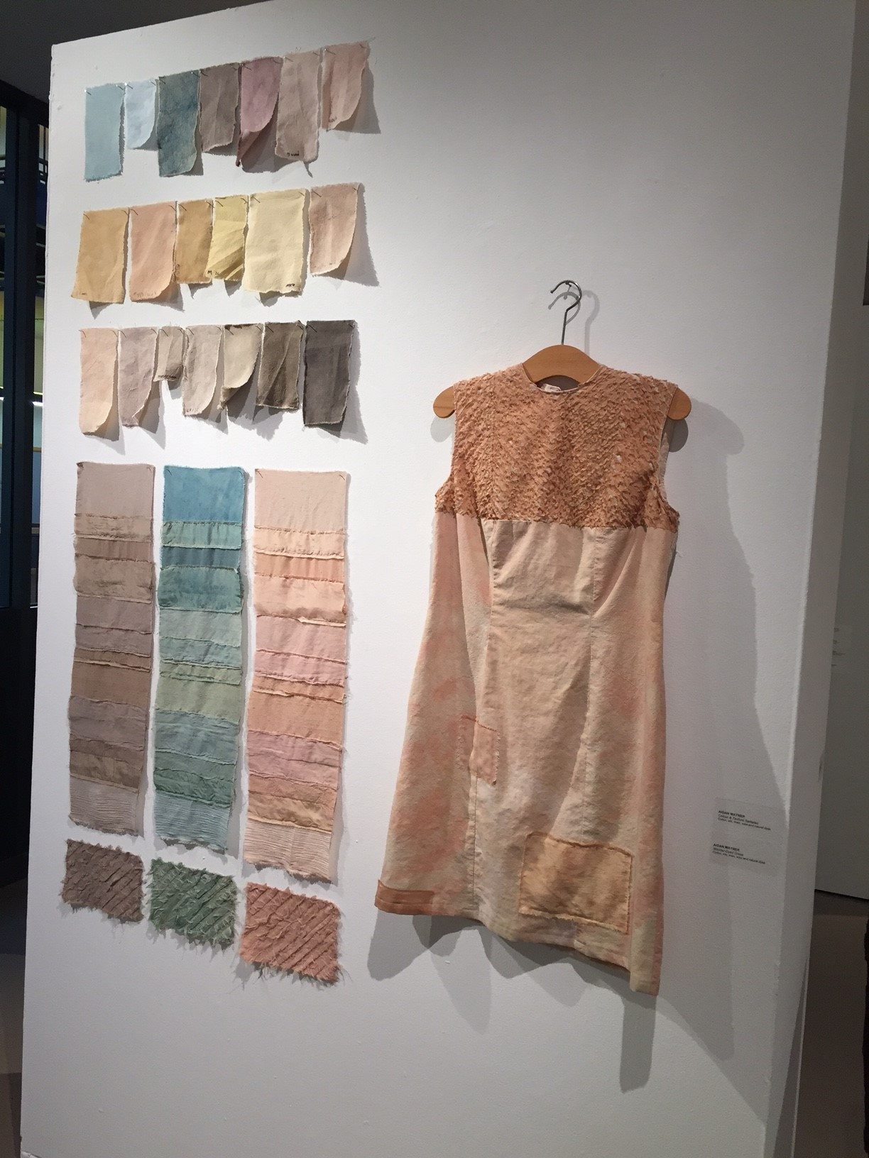 """""""Colour & Texture samples"""" and """"Madder-Dyed Dress"""" by Aidan Mayner"""
