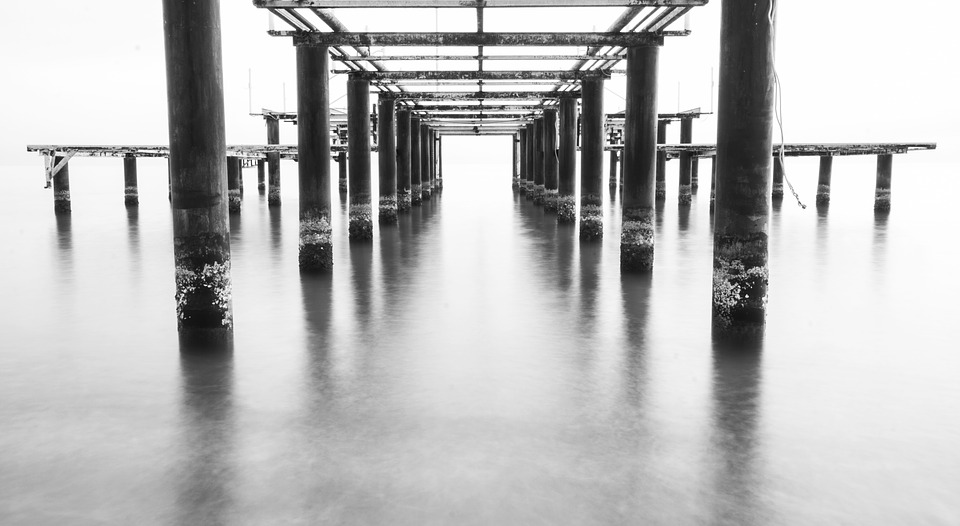black-and-white-1819676_960_720.jpg
