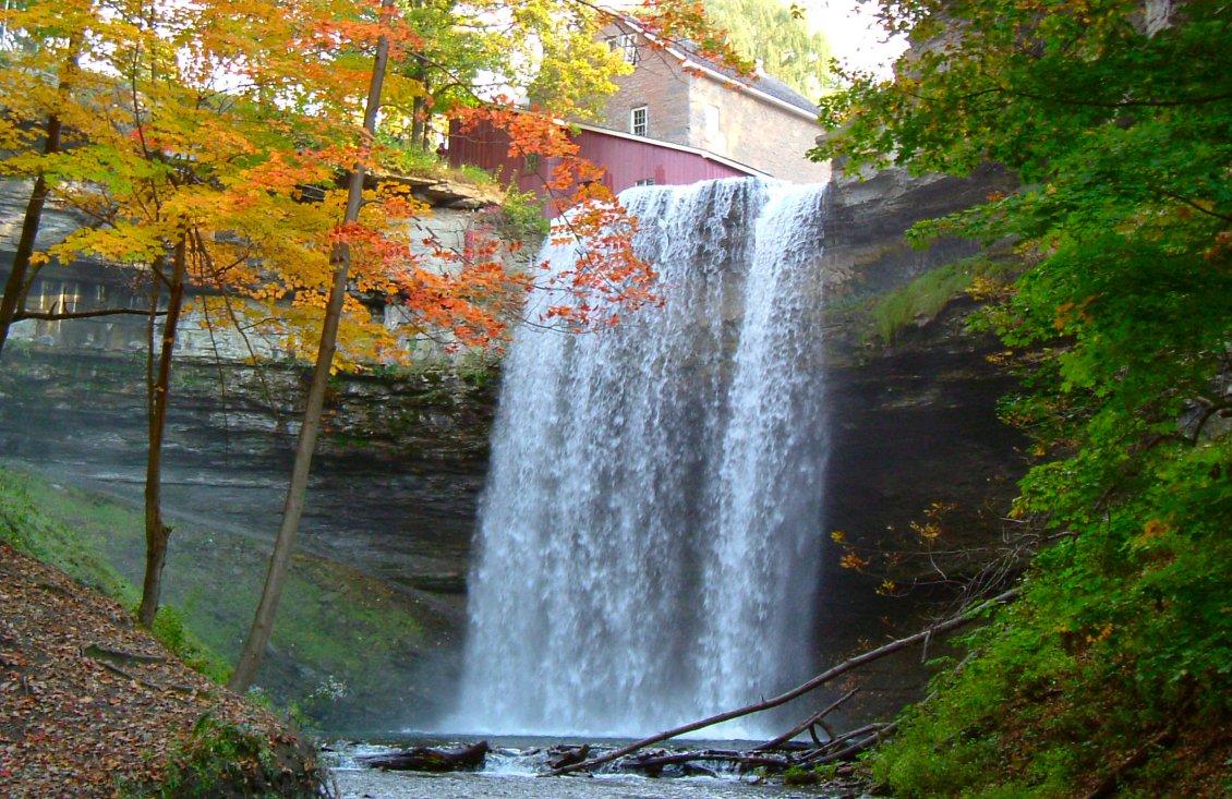 Decew_Falls_Fall.jpg