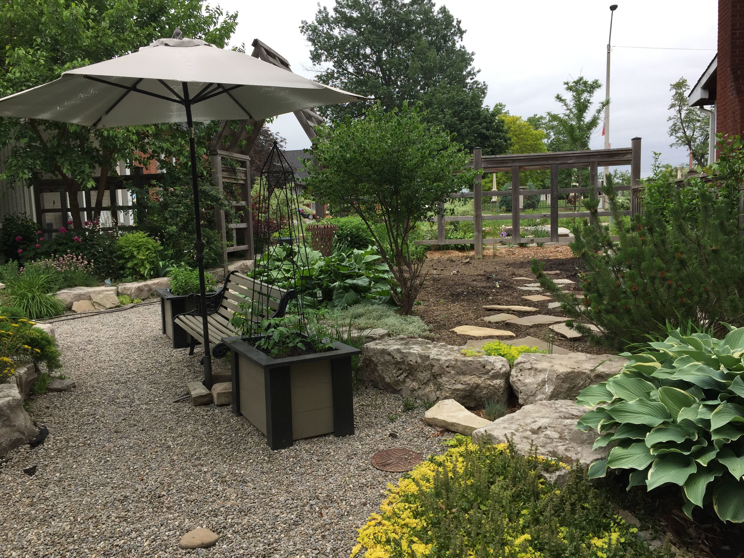 raised bed for vegetables and herbs.jpg