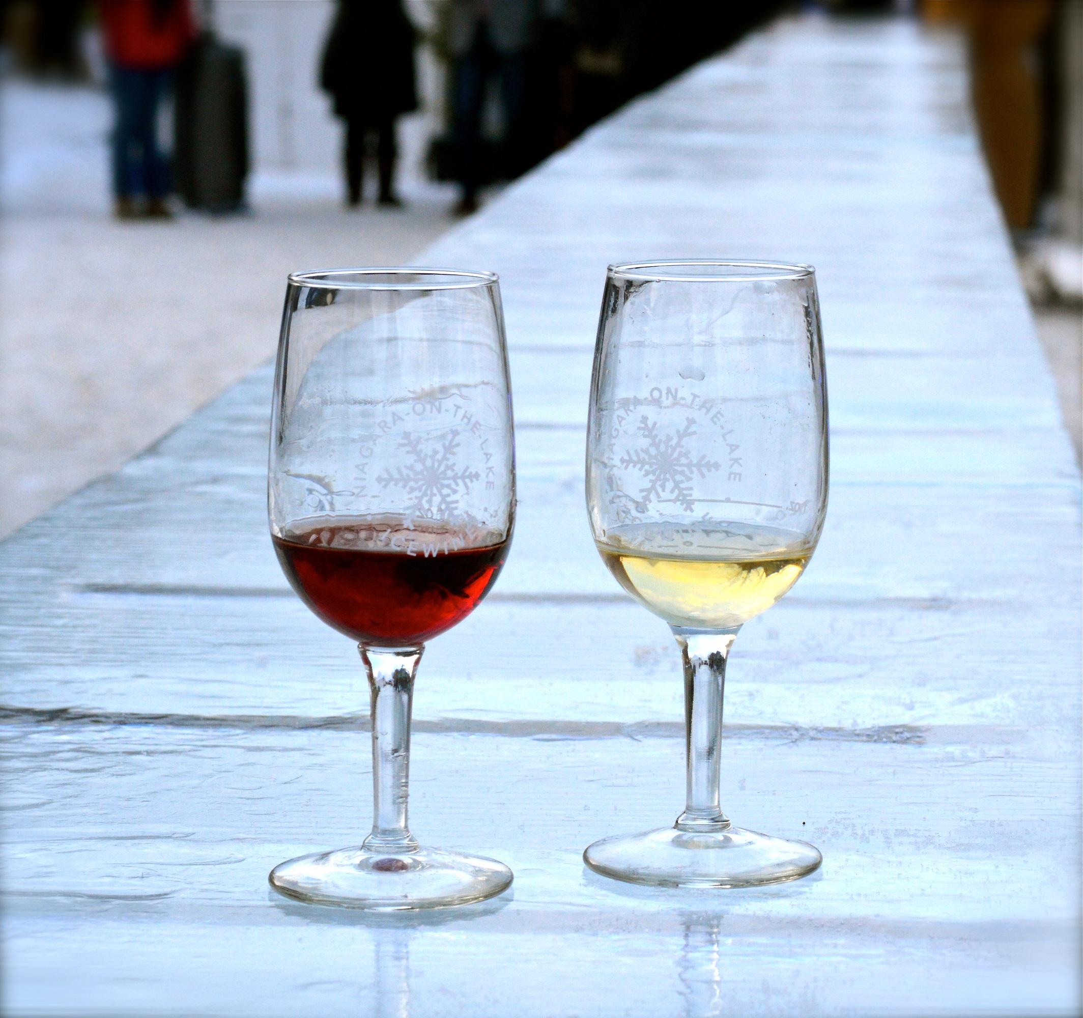 2019 Niagara Ice Wine Festival Modern Mississauga Media 6.JPG