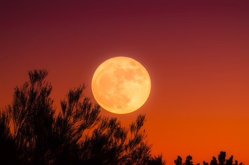 harvest-moon-1828012__340.jpg