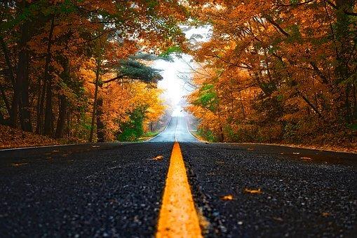 autumn-1758194__340.jpg