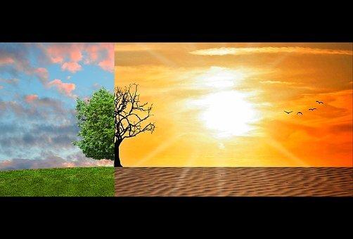 climate-change-2063240__340.jpg