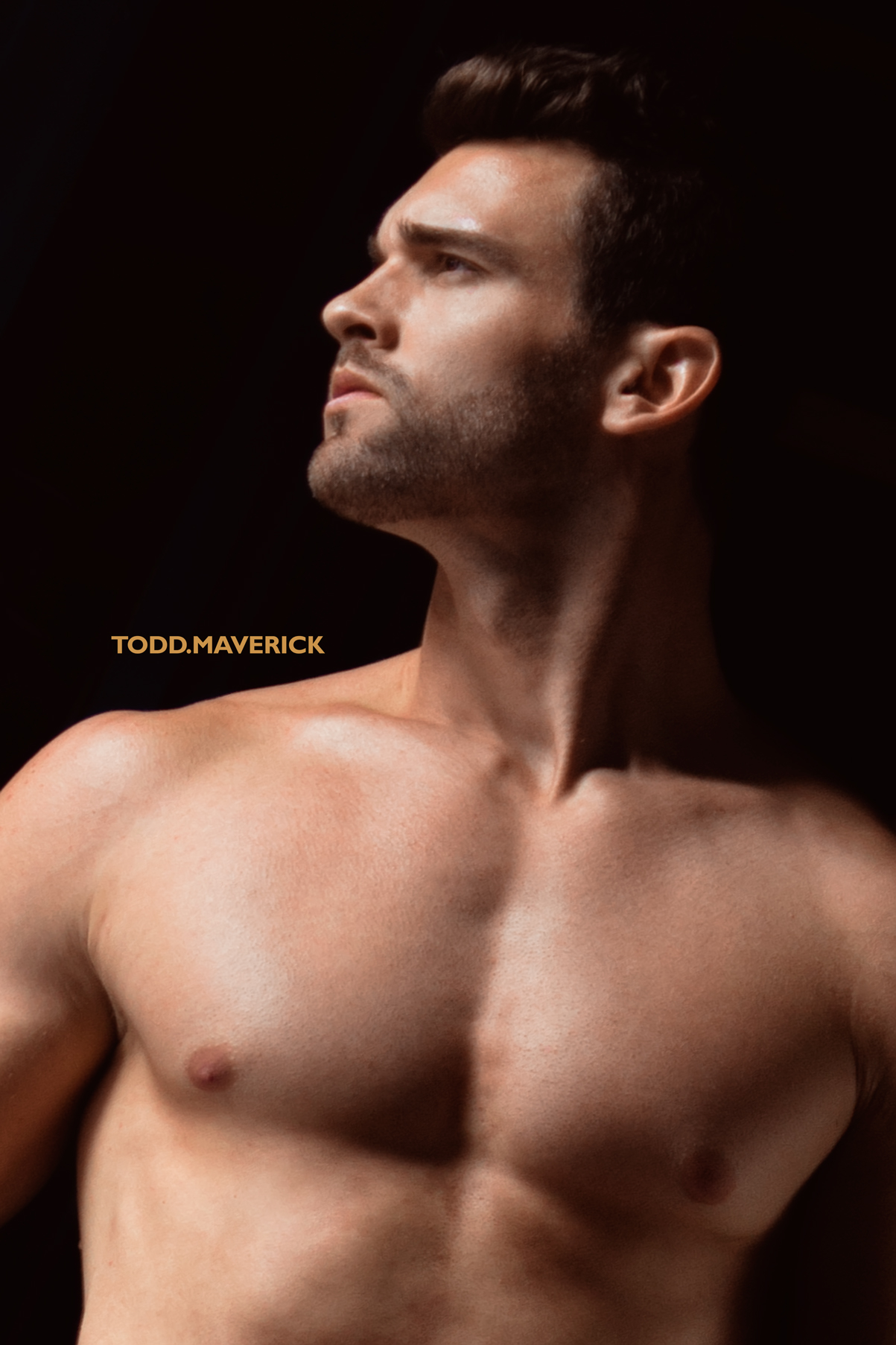 toddmaverick-logan-1.jpg