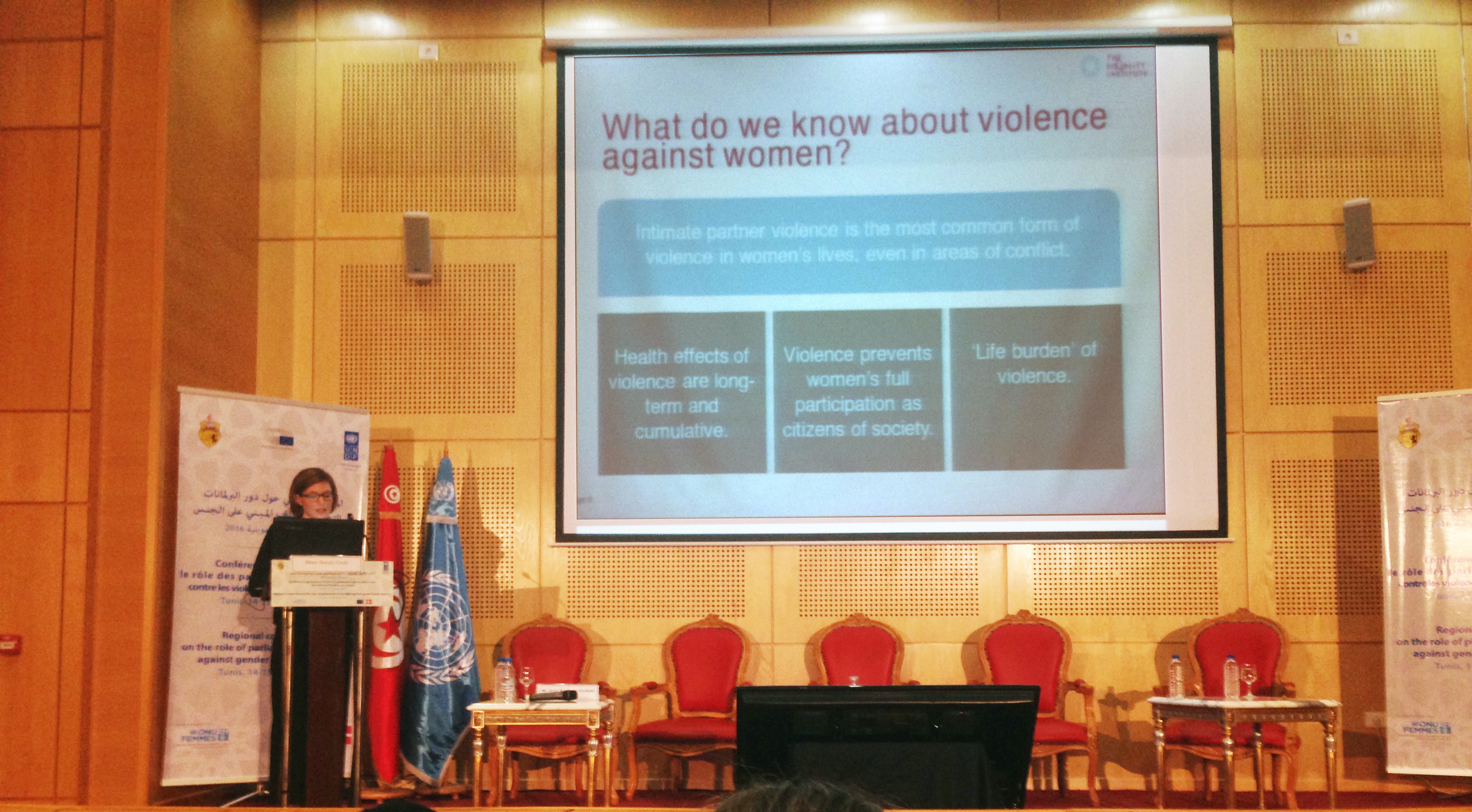 Sarah McCook presenting at the Regional conference on the role of Parliaments in the fight against gender-based violence