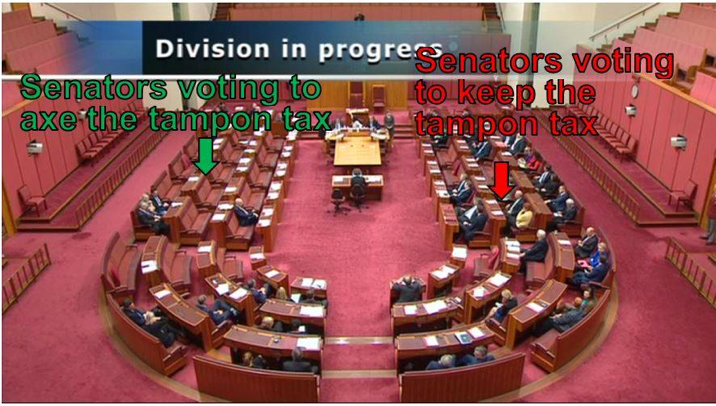Image courtesy of  Larissa Waters MP .