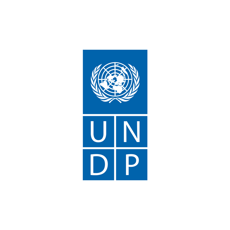 UNDP 6.png