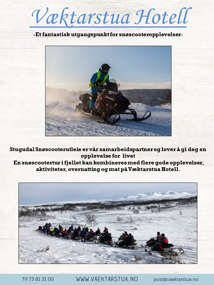 snøscooter png 2019.png