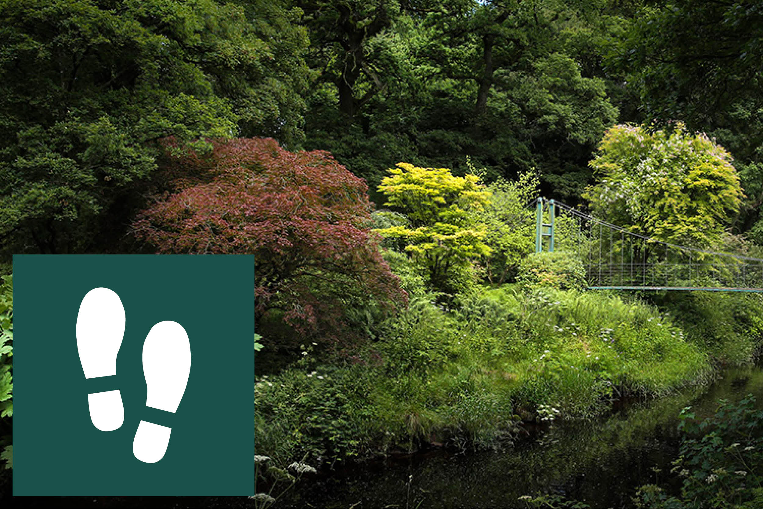 WALKING  Colebrooke Estate is one of the most beautiful places to walk and is a haven for wildlife whether in woodland or riverside.  There are numerous private lanes for walking, guests can walk off the tracks however we ask that you keep dogs on leads at all times and shut gates were necessary.