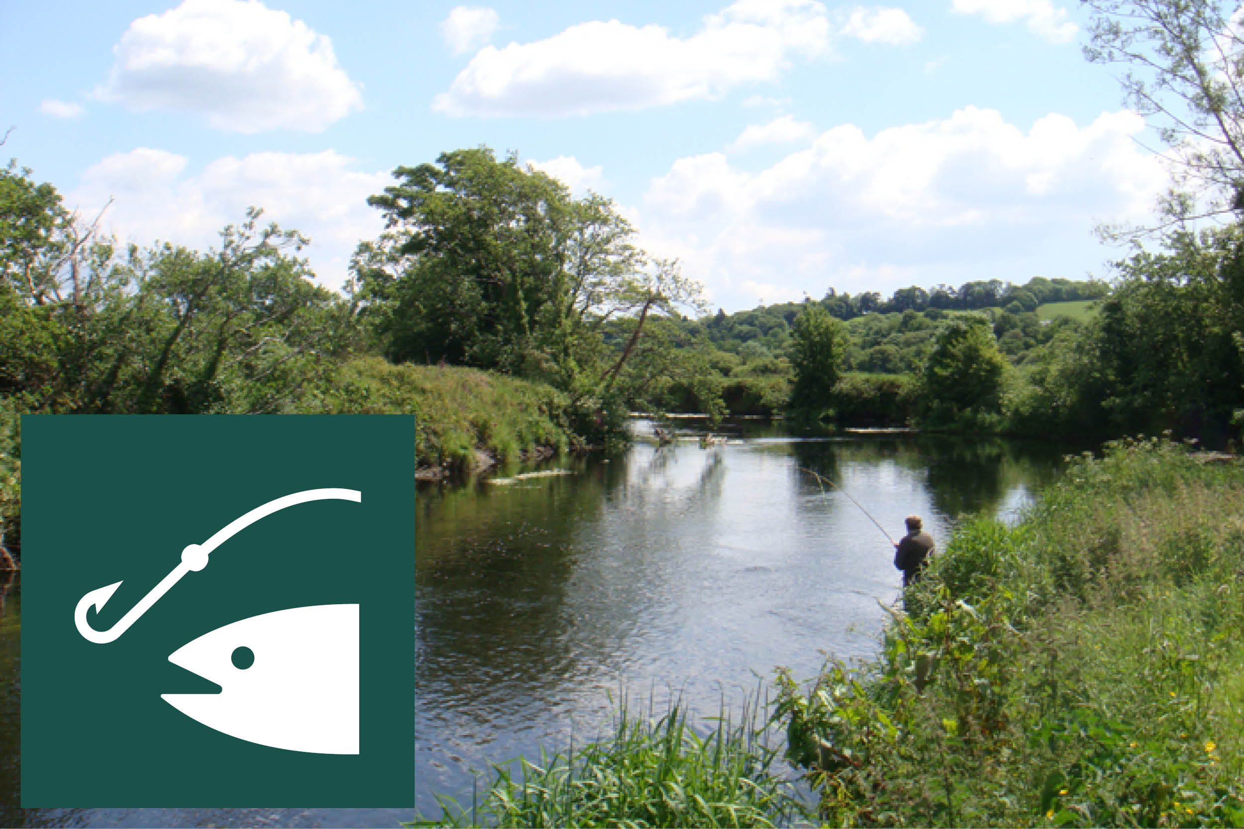 FISHING  There is excellent trout and pike fishing in the private 3 mile stretch of the Colebrooke River which runs through the estate.  There is also private trout fishing in hill loughs within 10 minutes of the cottages.  Equipment and licensing  Fishing equipment, 15 minute drive away  http://www.emersonslisnaskea.com/   Information on DARD fisheries in Fermanagh  http://www.nidirect.gov.uk/fisheries-in-county-fermanagh