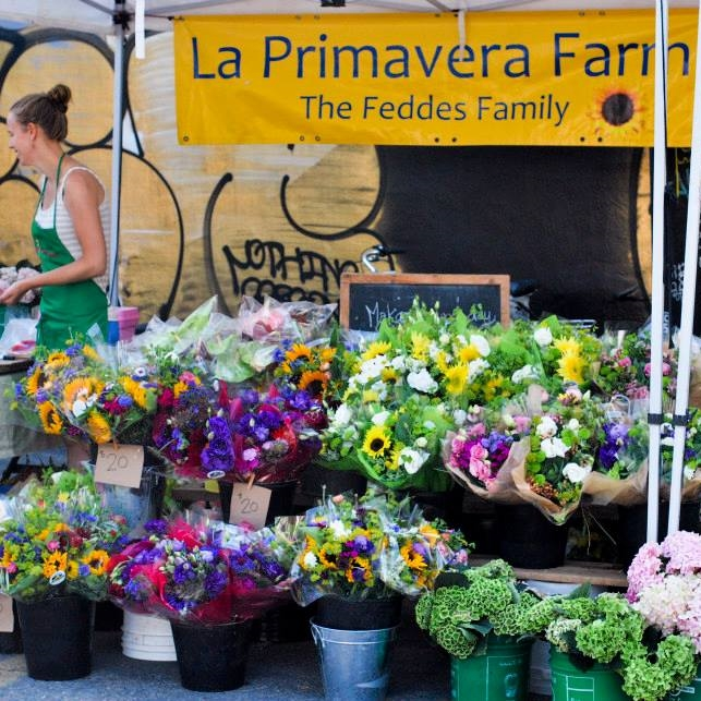 La Primavera Farms