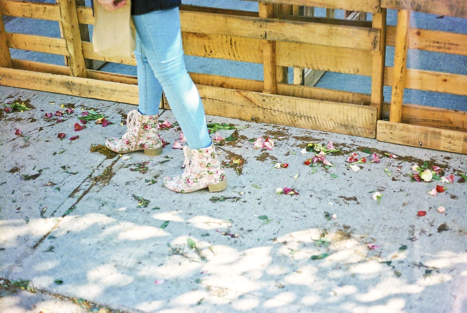 flowerwallpetals.jpg