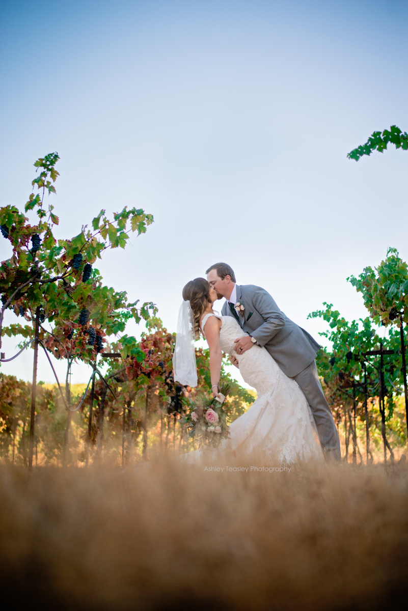Sacramento Wedding Photographer | Amador Cellars Winery | plymouth , CA | Ashley Teasley Photography