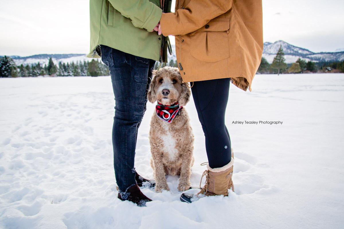 Britni & Dennis - Edgewood South Lake Tahoe - Lake Tahoe & Sacramento Wedding Photographer - Ashley Teasley Photography--34.JPG