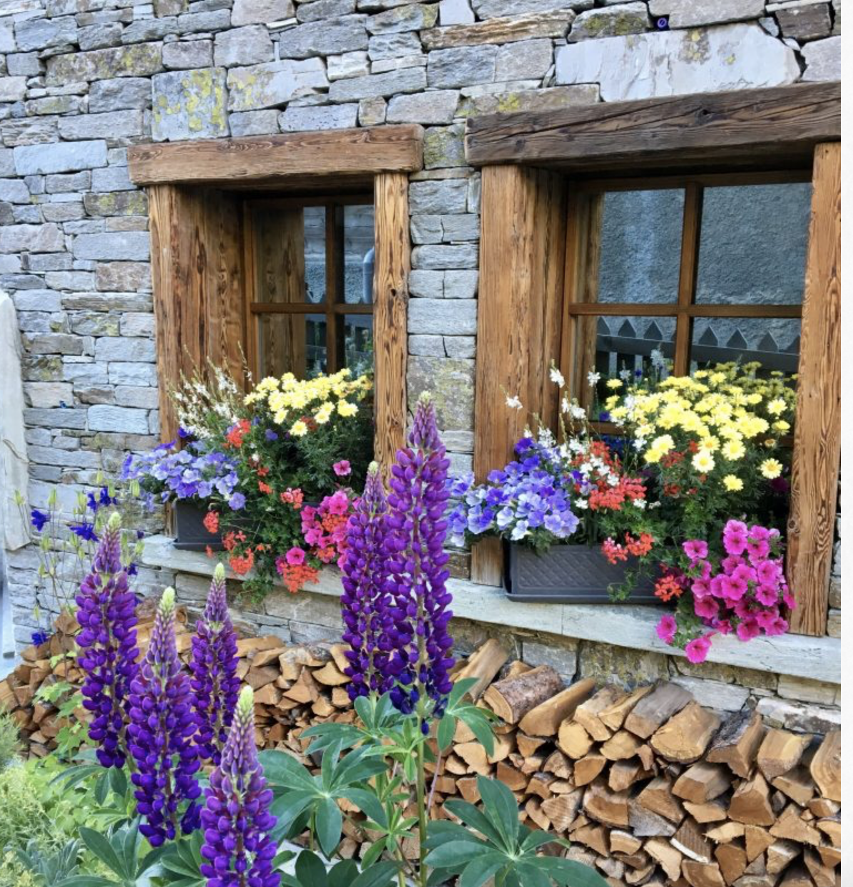 Alpine flowers and charming window boxes