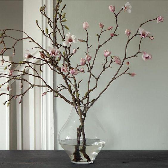 Pink magnolia.