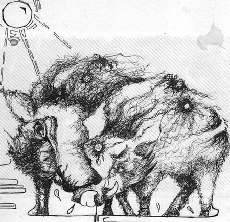 warthogs1.jpg